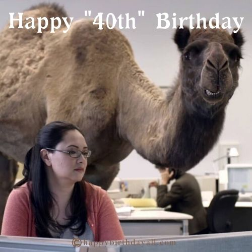 40th Birthday Memes for Her