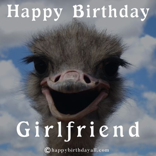 Funny Birthday Memes for Girlfriend