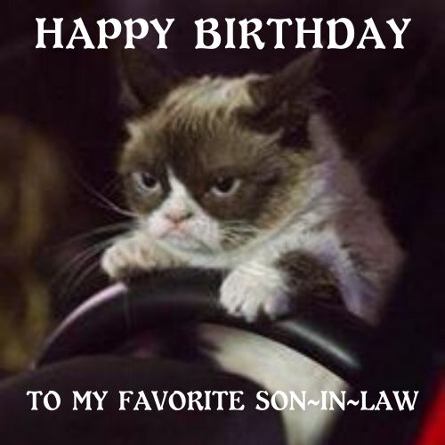 birthday memes for son in law