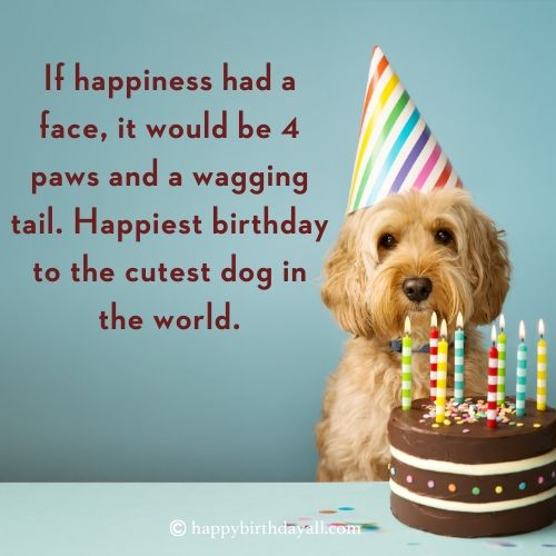 Birthday Wishes for a Dog with Images