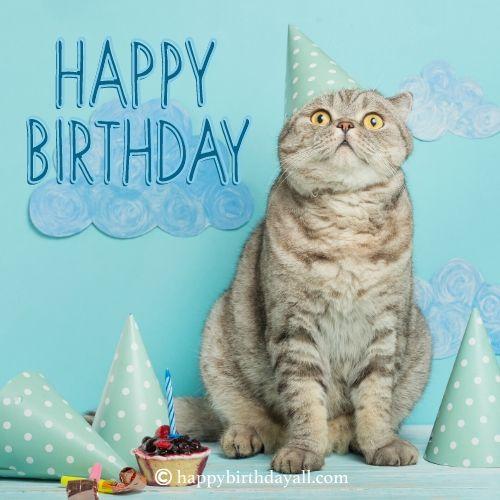 Best Birthday Wishes for Friend Son