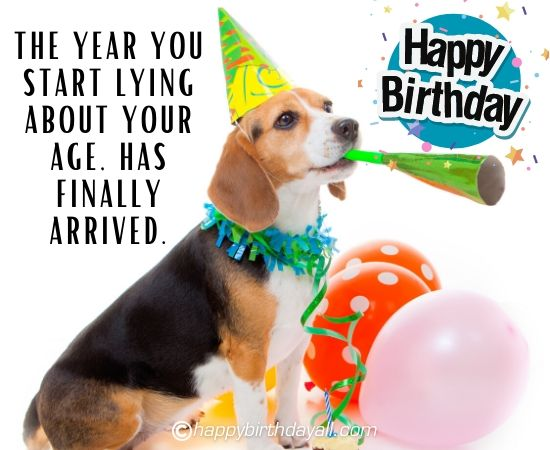 Funniest Birthday Dog Pic with Texts