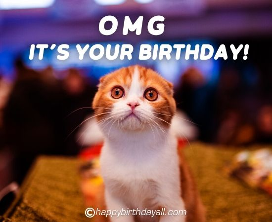 Funniest Birthday Pictures with Texts