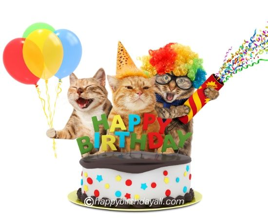 Download Funny Happy Birthday Images Free